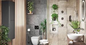 Plante naturale pentru baie: 6 Plante decorative care rezistă la umezeală