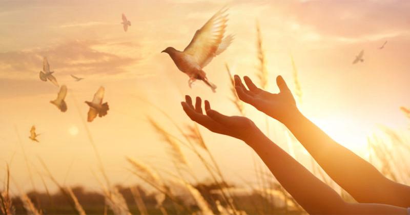 Cauți armonia și liniștea sufletească? Urmează aceste 10 sfaturi simple și eficiente.